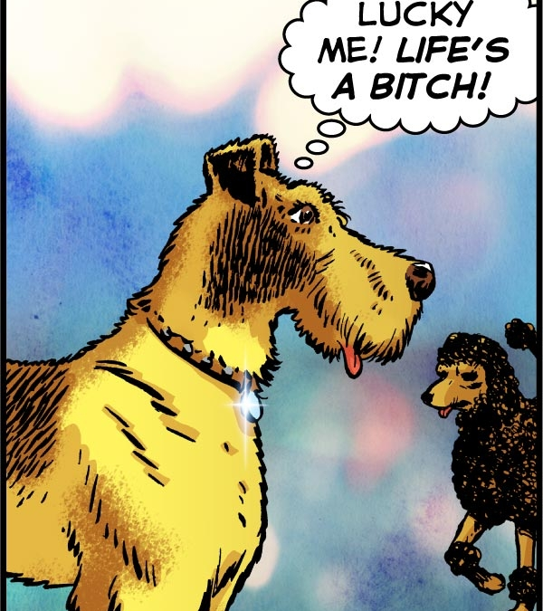 Life's a Dog